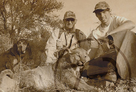 az dry ground lion huntingt Photos