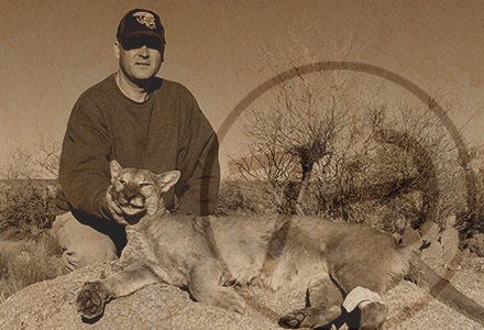 Craig Volkmann AZ Mountain Lion Photos