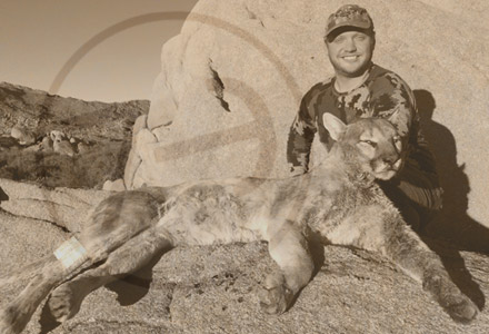 josh arizona mountain lion hunt Testimonials